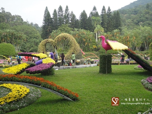 20121121-台北士林官邸菊展 (2)-2