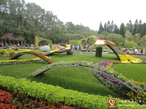 20121121-台北士林官邸菊展 (4)-2